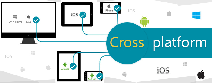 Cross platform application development services